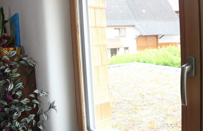 Holzfenster Lärche